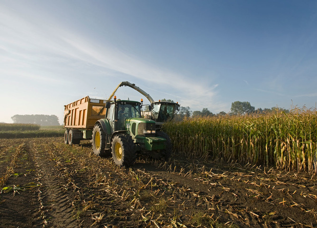 Rapport: bijna 90 procent landbouwsteun schadelijk voor mens of milieu