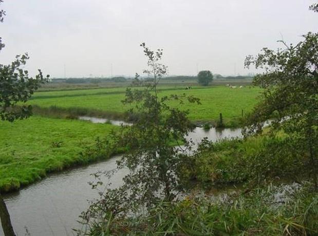 237 hectare extra natuurgebied in West-Vlaamse Polderstreek
