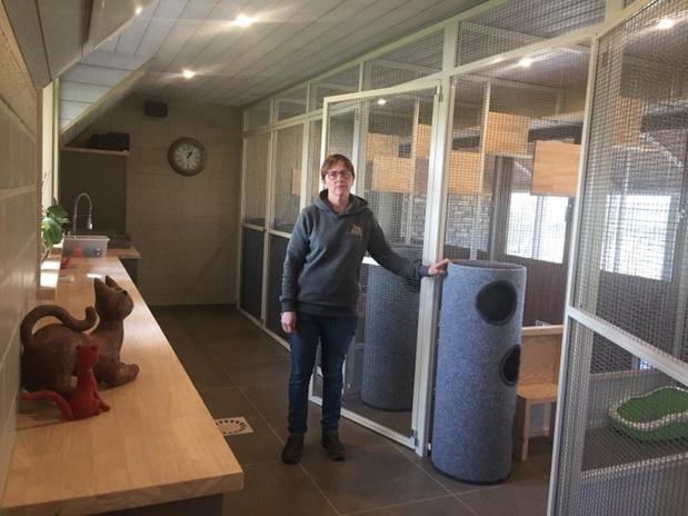 Uitbaatster leeg honden- en poezenhotel uit Poperinge is ten einde raad