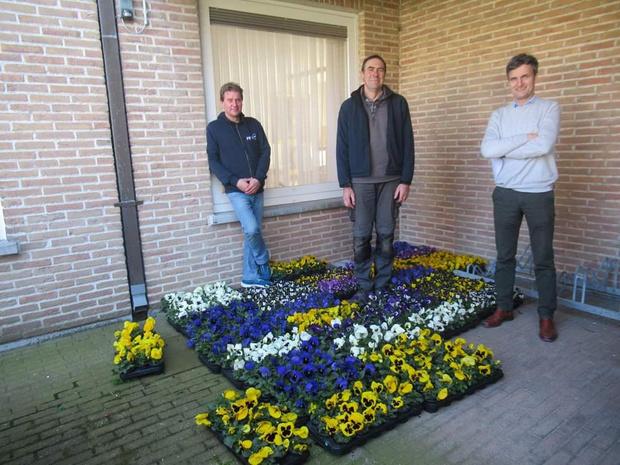 Viooltjes voor personeel van woonzorgcentrum Zilvervogel Reninge