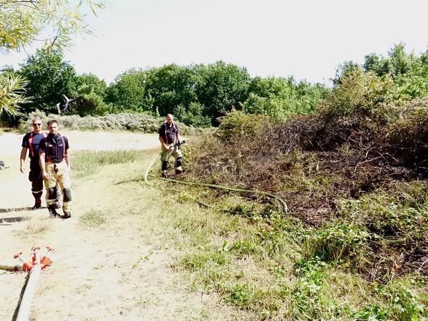 Natuurgebied 't Zwin vat vuur, heidebrand snel onder controle
