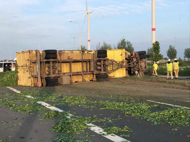 Vrachtwagen geladen met spinazie kantelt op Westhoekweg