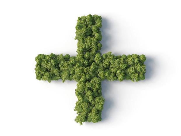 Les clés d'une pharmacie verte et durable