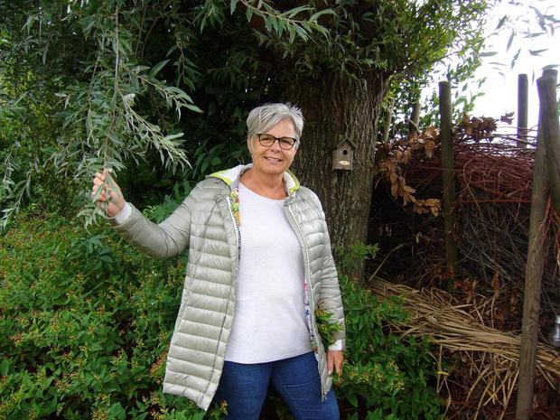 Tuinrangers nemen je mee op safari in je eigen tuin: vrijwilligers gezocht