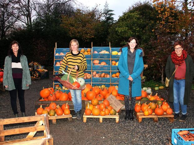 11.11.11-Lauwe verlengt de onlineverkoop van groentepakketten