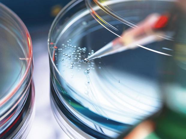 Les entreprises belges dans le secteur de la chimie et de la pharmacie, championnes de la R&D