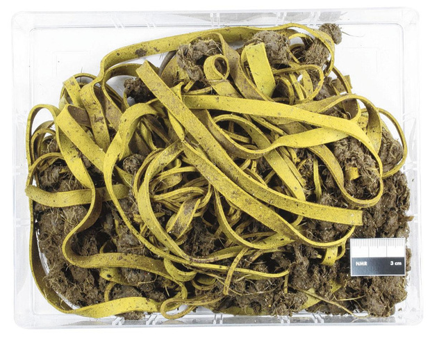 0,5 kilogram elastiekjes