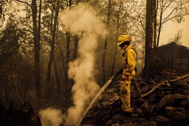 Facebook supprime une fausse information sur les incendies de forêt en Oregon