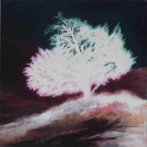 L'oeuvre de la semaine: Les arbres éblouis