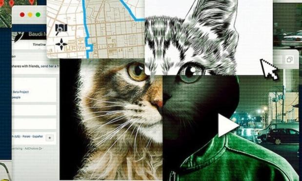 'Don't F**k With Cats': nieuwe Netflix-hype is een nachtmerrie voor kattenmensen