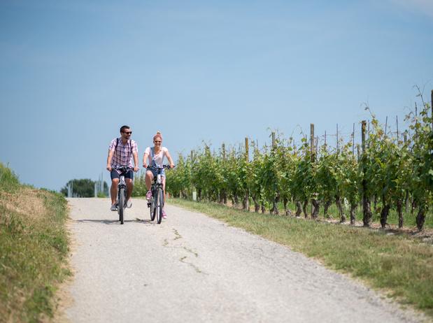 Quatre nouvelles pistes cyclables thématiques aux Pays Bas dès septembre