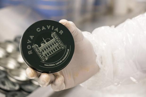 Désormais, grâce à Madagascar, le caviar peut aussi être africain