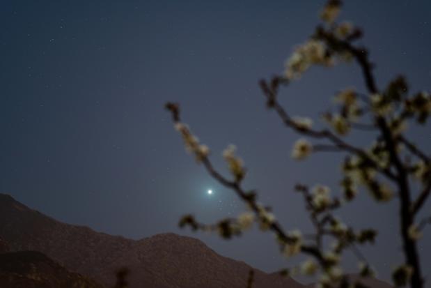 Mogelijk teken van leven gevonden op Venus