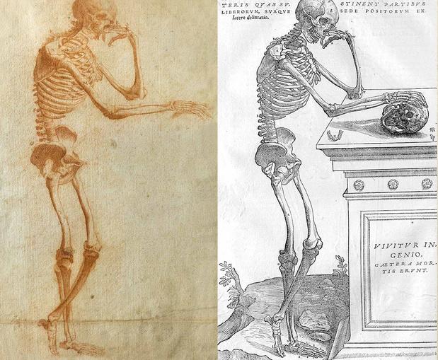 Nieuwe inzichten over leven en werk van Andreas Vesalius