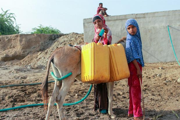 La moitié de la population du Yémen est en insécurité alimentaire
