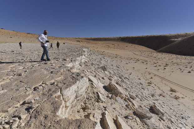 Découverte d'empreintes humaines vieilles de 120.000 ans en Arabie saoudite