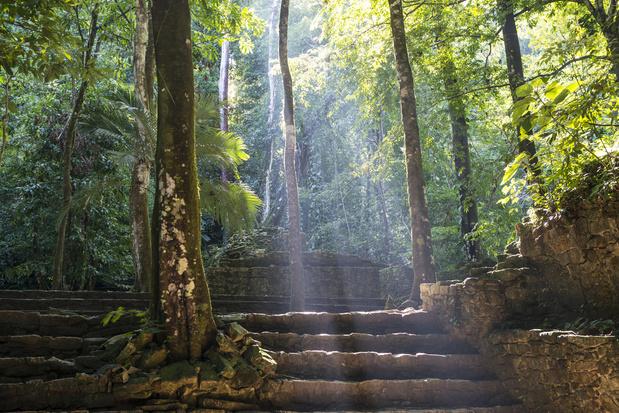 Le plus ancien site maya découvert au Mexique grâce à une technologie laser