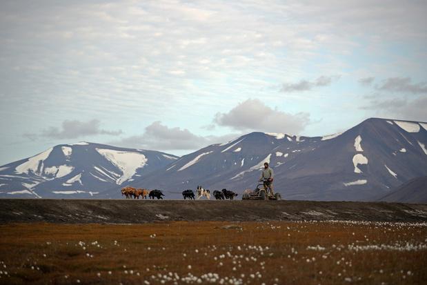 """En plein coeur de l'Arctique, l'""""Arche de Noé végétale"""" s'étoffe"""
