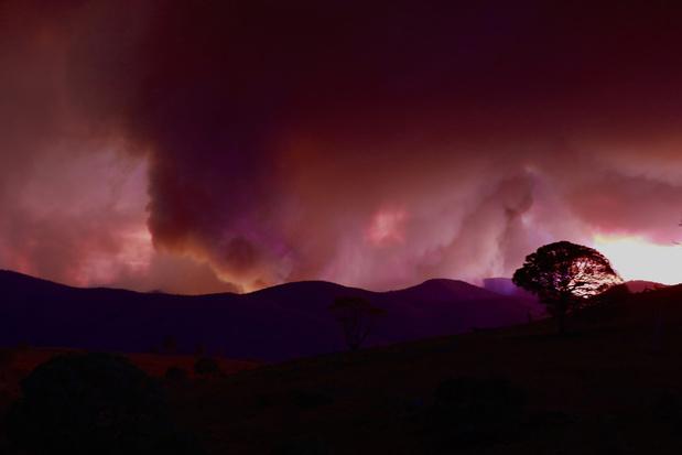 """Australie: 250 scientifiques réclament des """"actions urgentes"""" du gouvernement"""