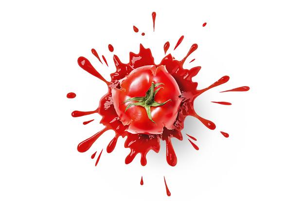 """Le Belge est en colère : """"il faudrait lancer des tomates à la figure de tous les politiciens"""""""