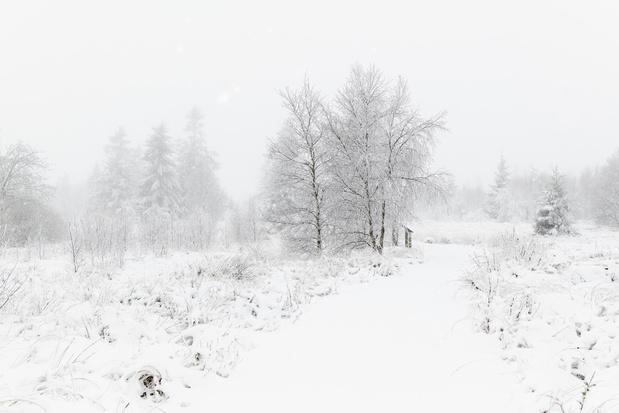 Les hivers sans neige vont-ils devenir la norme en Belgique?