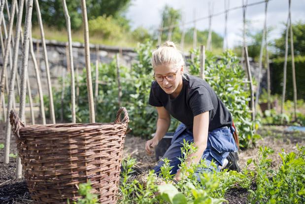 Jardinage raisonné: nos conseils et bons trucs récup'