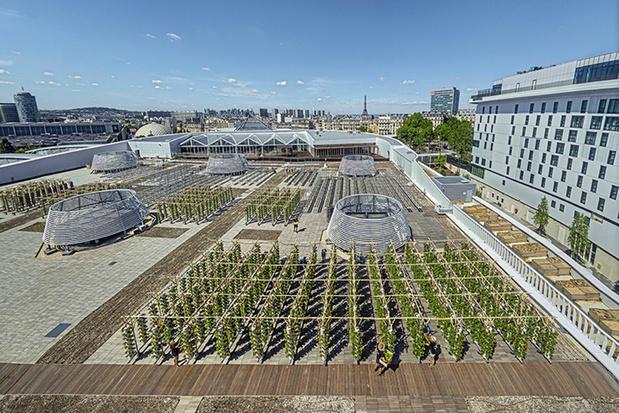 Paris inaugure une des plus grandes fermes urbaines d'Europe