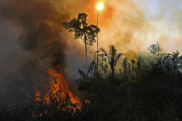Brésil: l'Amazonie et le Pantanal toujours ravagés par les incendies