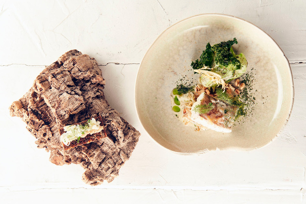 Kort gebakken wijting met spitskool, zadenrisotto en groene kruiden