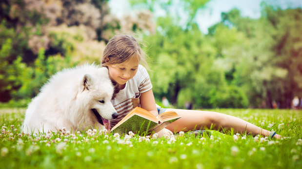 Je veux un chien: 3 livres sur l'amitié entre enfant-chien