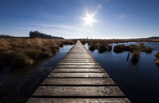 Balades en Wallonie: 20 promenades de quelques heures ou de plusieurs jours pour découvrir le sud du pays