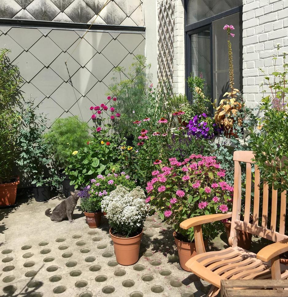 Een tuin in potten