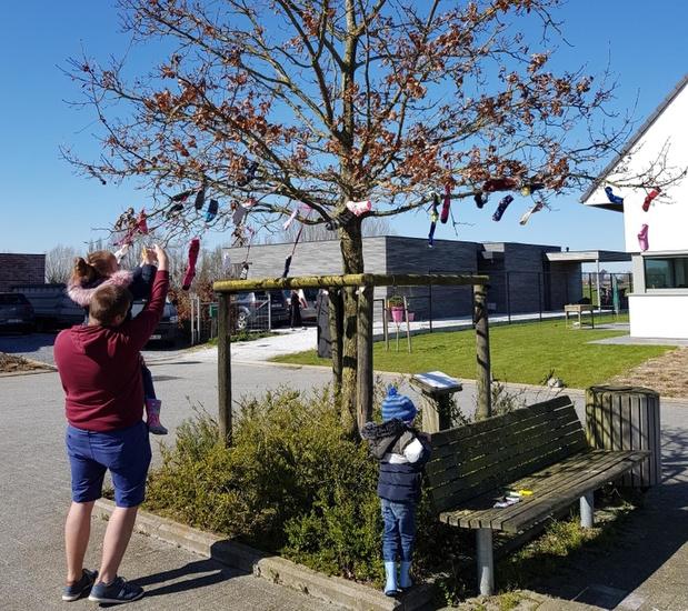 Sokken in boom voor Wereldownsyndroomdag in Pollinkhove