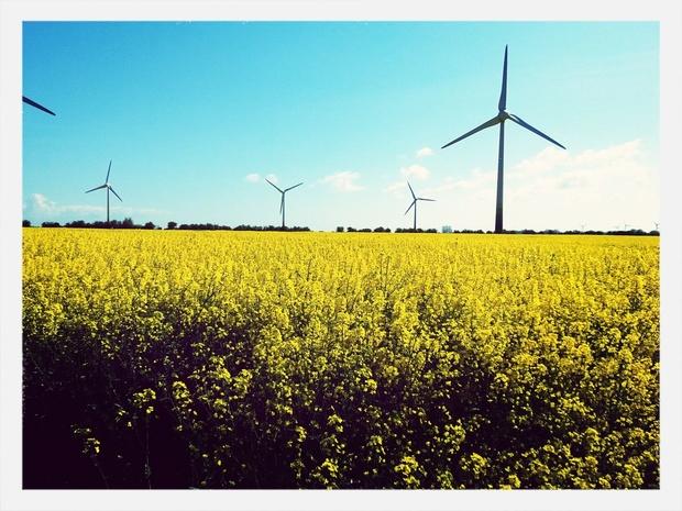 De plus en plus d'investisseurs se détournent des énergies fossiles, selon des ONG