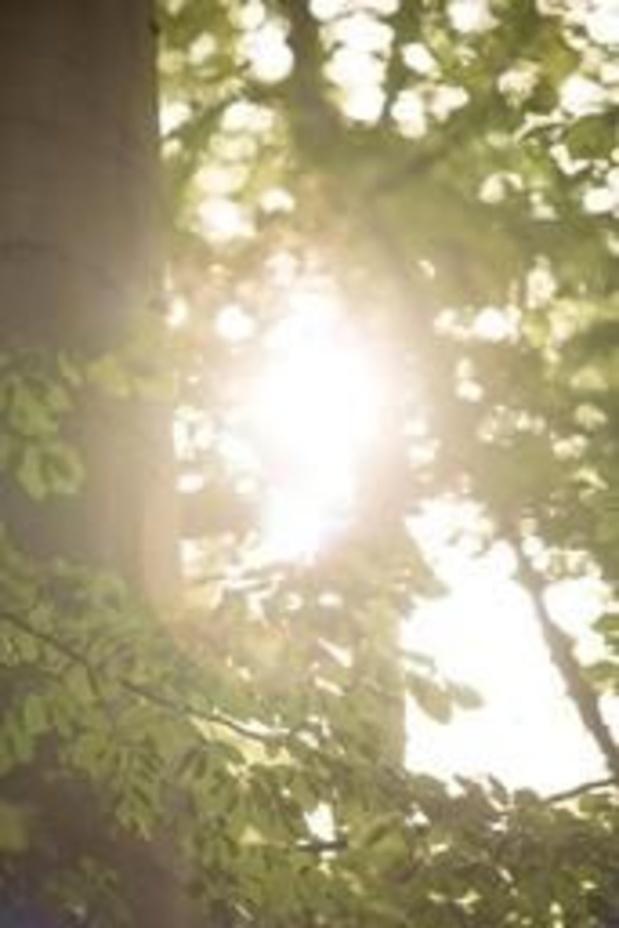 Météo: le soleil repointe bientôt le bout de son nez