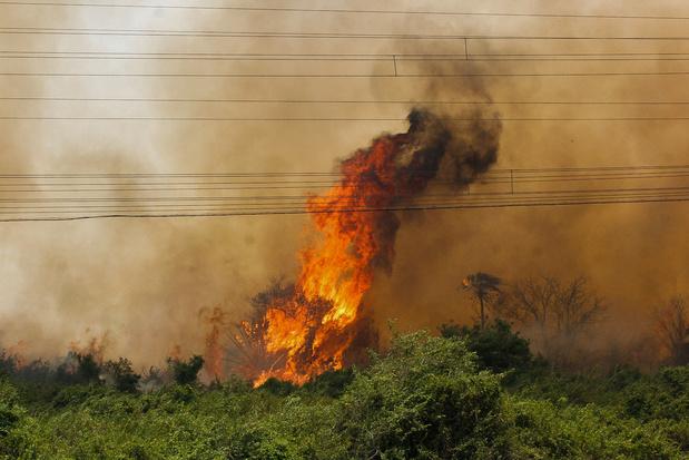 """Des incendies """"d'une intensité jamais vue"""" au Brésil"""