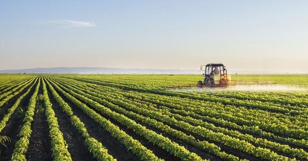 EU-lidstaten bereiken akkoord over hervorming landbouwbeleid