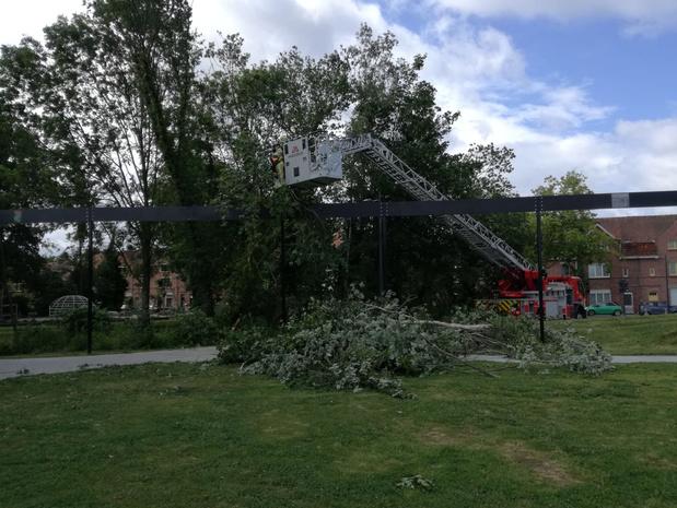 Près de 1.600 appels reçus samedi au numéro 1722 pour des dégâts liés à la tempête