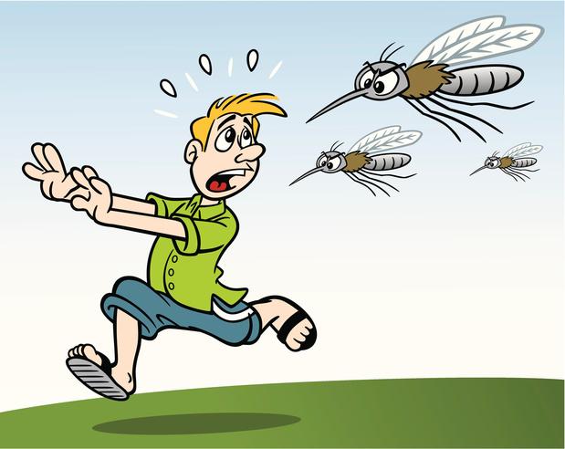 Hoe hou je de muggen van je lijf