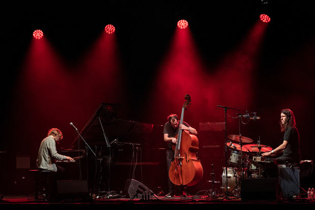 Ottla en De Beren Gieren op Jazz Middelheim 1.5: contrasten die elkaar versterken