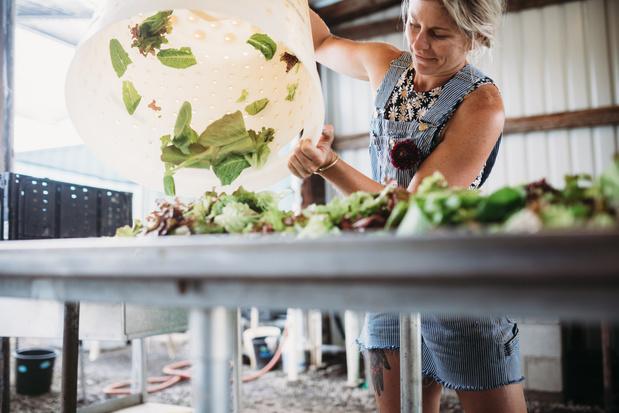 Jaarlijks voor vierhonderd miljard dollar aan eten verloren tussen productie en supermarkt