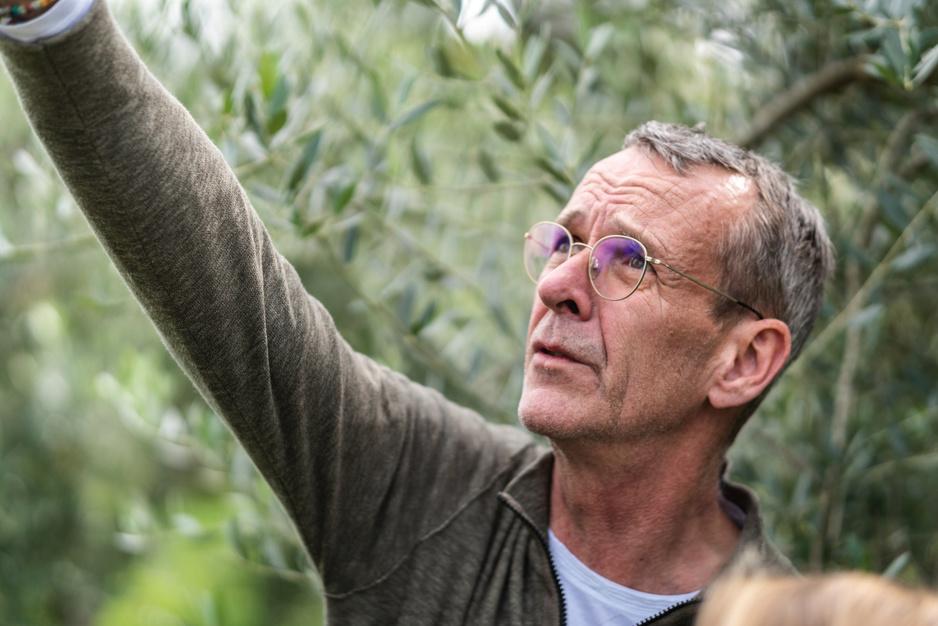 Deze Belg maakt een van de beste olijfolies ter wereld