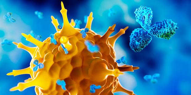 KB verbiedt zelftests op Covid-19-antistoffen