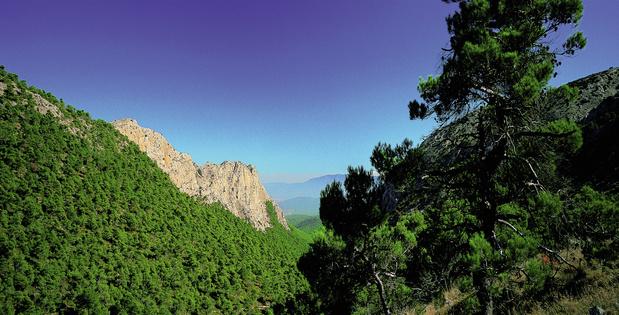 Rondreis door Zuidoost-Spanje (Murcia en Valencia)