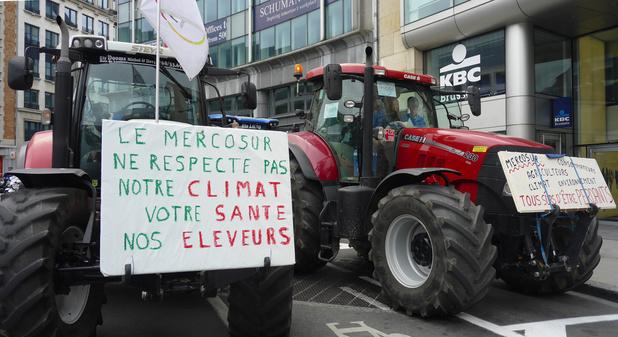 """""""Mercosur, la mort de l'agriculture"""": une cinquantaine d'agriculteurs manifestent à Bruxelles contre l'accord"""