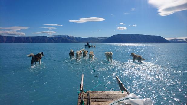 La photo virale qui révèle la gravité de la fonte des glaces