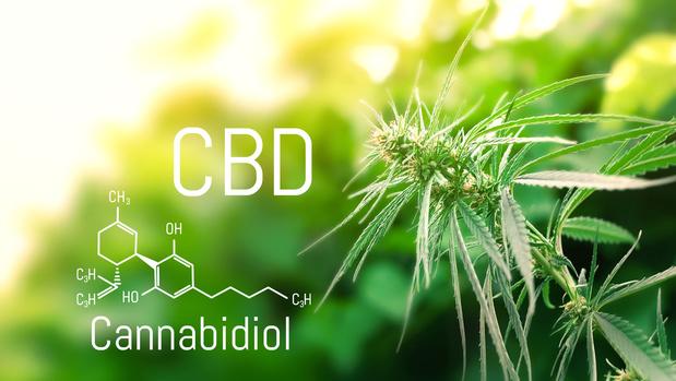 Le cannabidiol disponible via les pharmacies belges