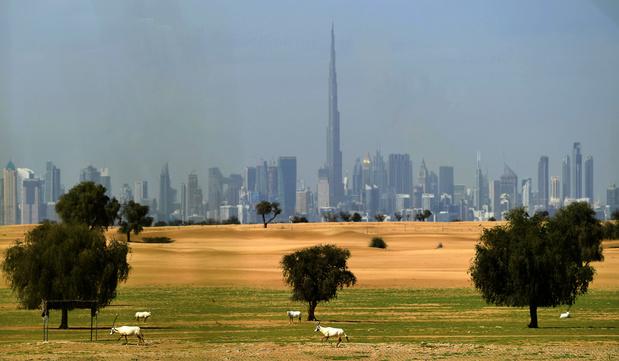 """Les Emirats ferment """"malls"""" et restaurants face au coronavirus"""