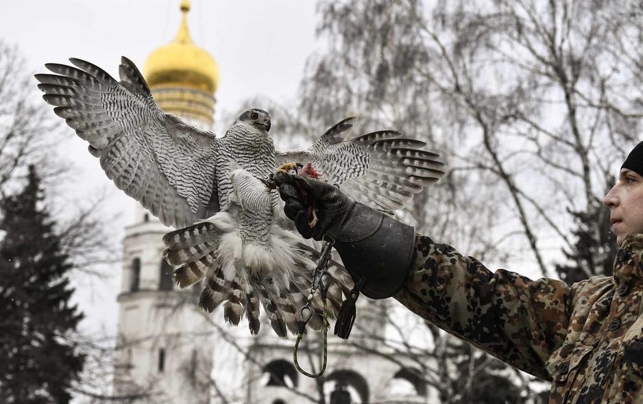 A Moscou, une escadrille de rapaces pour protéger le Kremlin (en images)