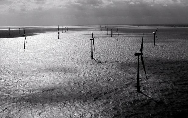 Rapport: windparken hebben negatieve en positieve gevolgen voor ecosysteem van Noordzee